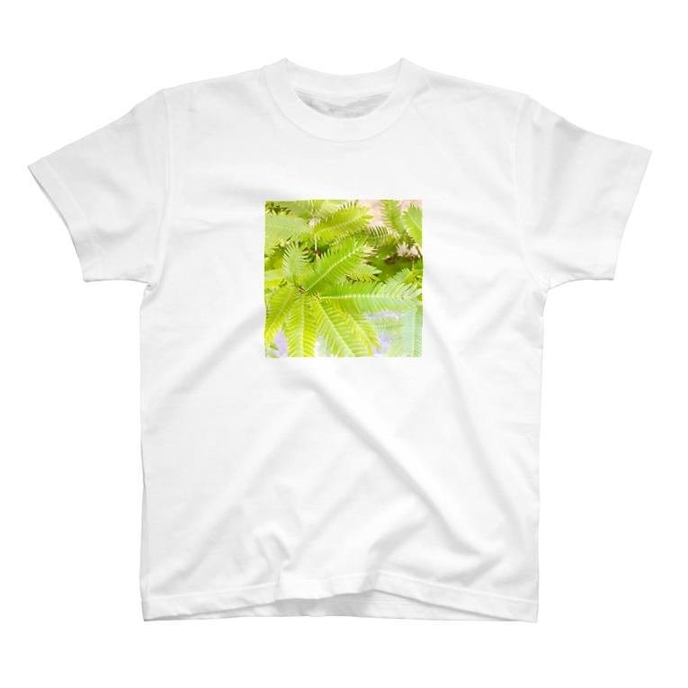 kotyae★roomのネムノキ T-shirts