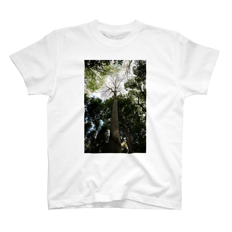 treeseekの見上げればTシャツ T-shirts