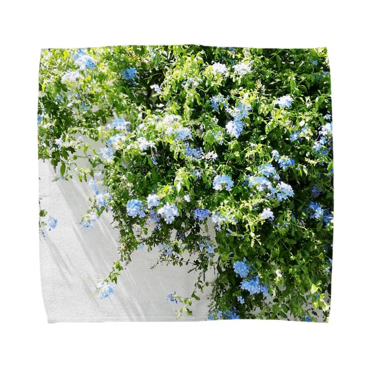 photo-kiokuのルリマツリ Towel handkerchiefs