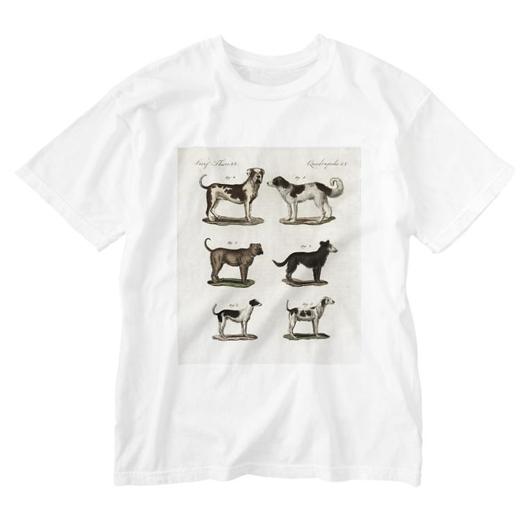 J. Jeffery Print Galleryの1802年ドイツの犬たち Washed T-shirts