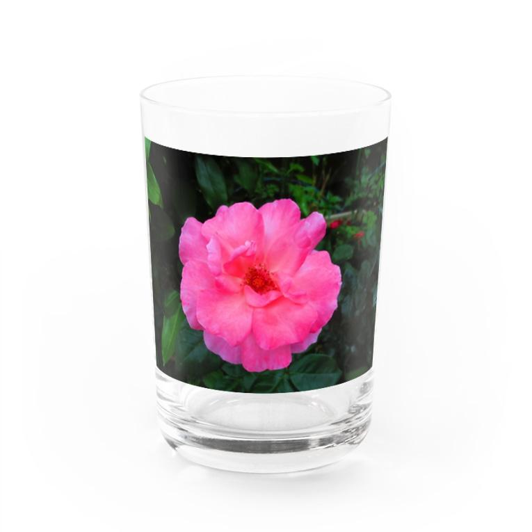 Dreamscapeのほのかな流れの中で・・・ Water Glass