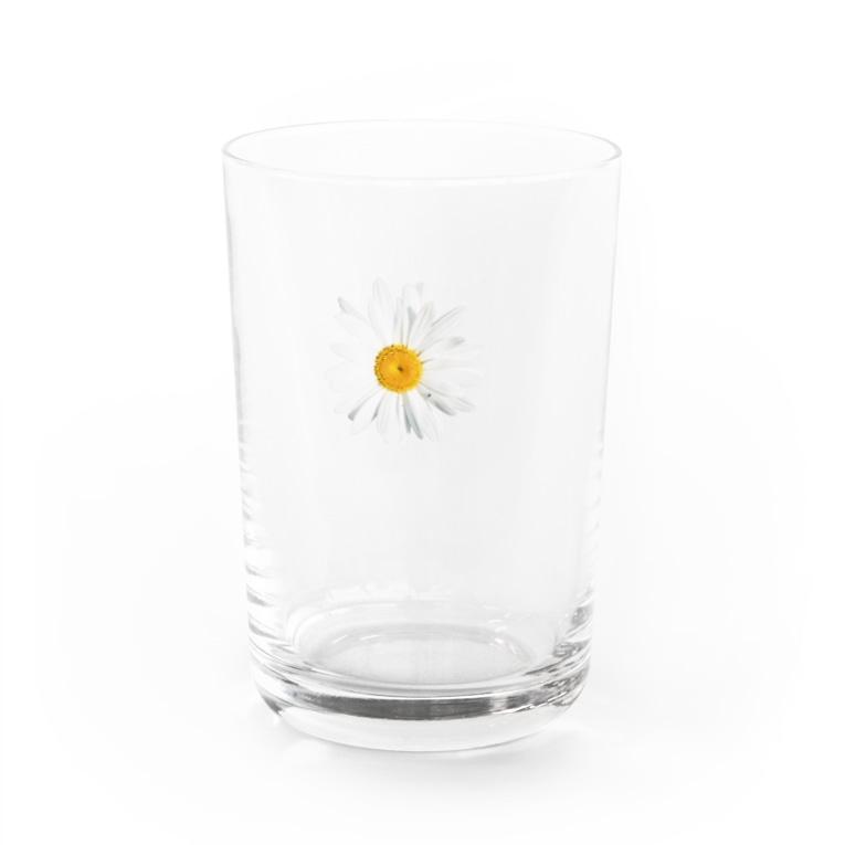 lenhung2108のdaisy flower Water Glass
