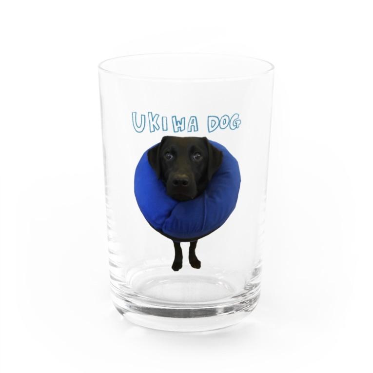 食いしん坊の黒ラブクロエのクロエ Water Glass