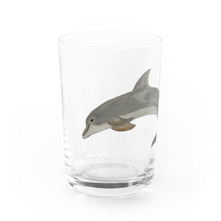 Coshi-Mild-Wildの💕バンドウイルカですヨ🐬 Water Glass
